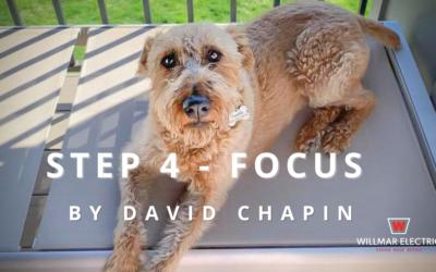 STEP 4 – FOCUS